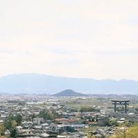 eni_yuite_tsujo